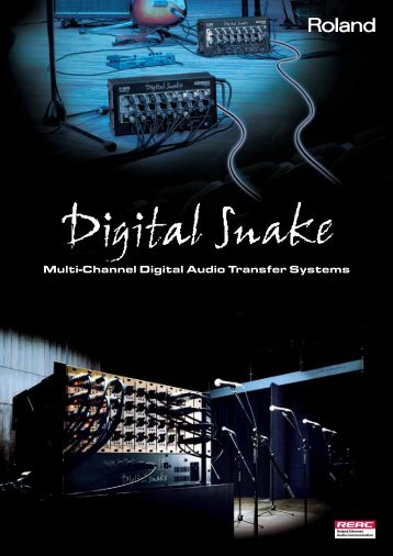 Digital Snake System Brochure - Roland Systems Group