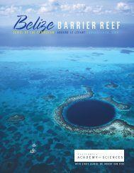 Belize BARRIER REEF - California Academy of Sciences
