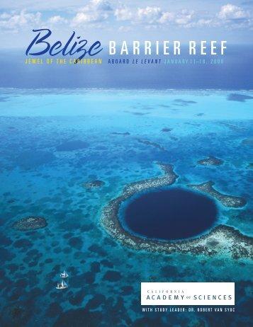 Belize BARRIER REEF - California Academy of Sciences