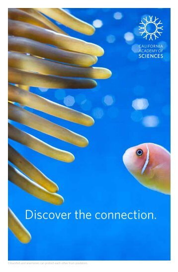 Discover the connection. - California Academy of Sciences