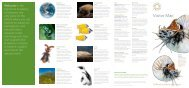 Download a visitor map [418k] - California Academy of Sciences