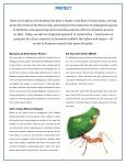 Annual Report 2004–2005 - California Academy of Sciences - Page 7