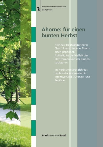 Kannenfeldpark - Stadtgärtnerei - Basel-Stadt