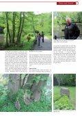 Die komplette aktuelle Ausgabe als PDF-Datei ... - Stadtmagazin - Page 7