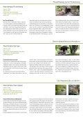 Wandertipps - Stadtmarketing Springe - Page 2