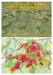 Methodik und Problemlösungen - das Beispiel Naumburg (Saale)
