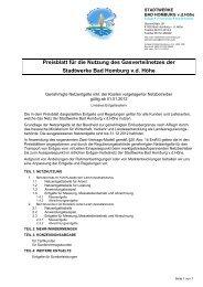 Genehmigte Netzentgelte inkl. der - Stadtwerke Bad Homburg