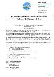 Preisblatt für die Nutzung des Gasverteilnetzes der Stadtwerke Bad ...