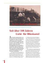 Kurzfassung - Stadtwerke Bliestal