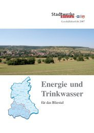 Geschäftsbericht 2007 - Stadtwerke Bliestal