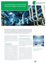 Kundeninformation: Effiziente Erdgas-Verstromung - Stadtwerke ...