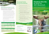 Download Flyer eXtra öko - Stadtwerke Flensburg