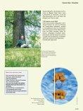 Download - Stadtwerke Itzehoe - Seite 4