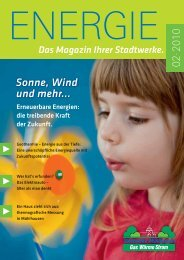 2/2010 - Stadtwerke Mühlhausen GmbH