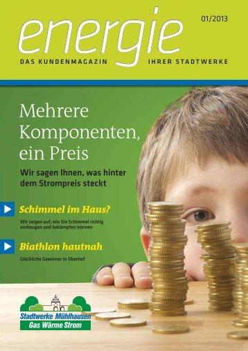 01/2013 - Stadtwerke Mühlhausen GmbH