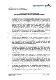 Anlage 8 zum Lieferantenrahmenvertrag Strom - Stadtwerke Pirna ...