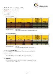 Preisblatt Netznutzung Gas ab 01.01.2011 - Stadtwerke ...