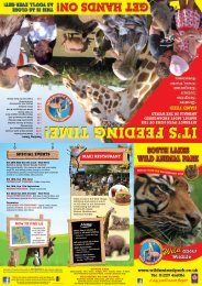 South Lakes Wild Animal Park - Days Out Leaflets