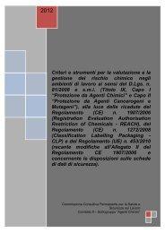 Criteri e strumenti per la valutazione e gestione del rischio chimico ...