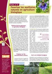 Fiche n°3 - Tela Botanica