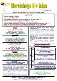 MBI 71 1er Trimestre 2012 - GRAB, Groupe de Recherche en ...