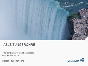 Holger Tausendfreund, Munich Re