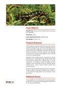 10 - Doğa'nın Okulu - Page 2