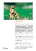 10 - Doğa'nın Okulu - Page 3