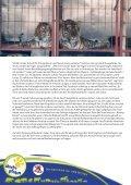 Wildtiere im Zirkus - Starke Pfoten - Seite 2