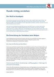 Hunde richtig verstehen (454 KB) - Vier Pfoten