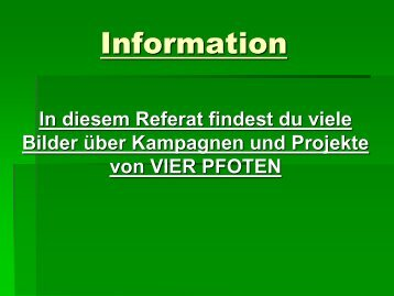 Information - Starke Pfoten