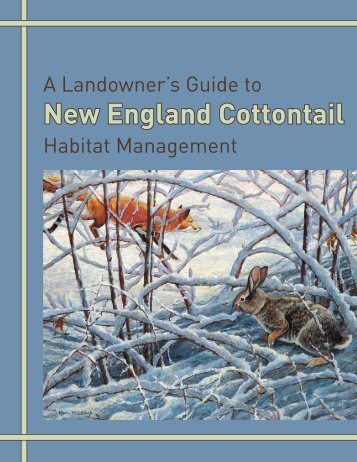 New England Cottontail Guide [PDF] - Maine.gov