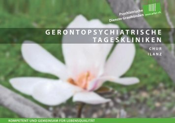 Gerontopsychiatrische Tageskliniken