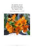 Blumen-Foto-Buch - Page 6