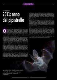 Chirotteri. 2011: anno del pipistrello - SIVeMP
