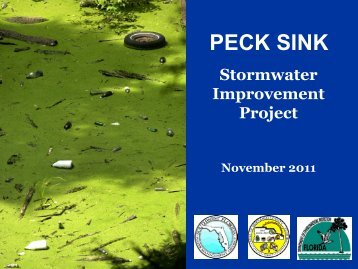 PECK SINK - Hernando County