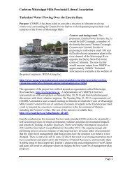 Carleton-Mississippi Mills Provincial Liberal Association Turbulent ...