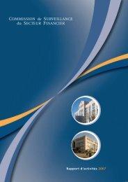 R a p p o rt d 'a ctiv ité s 2 0 0 7 Rapport d'activités 2007 - paperJam