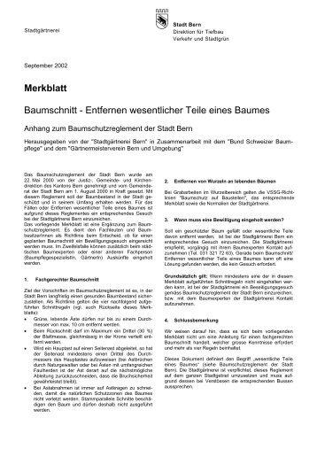 Merkblatt Baumschnitt Stadt Bern - Baumpflege Woodtli