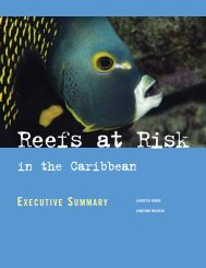 Reef at Risk Caribbean Exec Summ.pdf - World Resources Institute