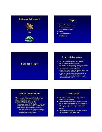 Nuisance Bat Control Topics Basic bat biology General information ...
