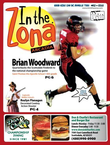 Brian Woodward - In The Zona