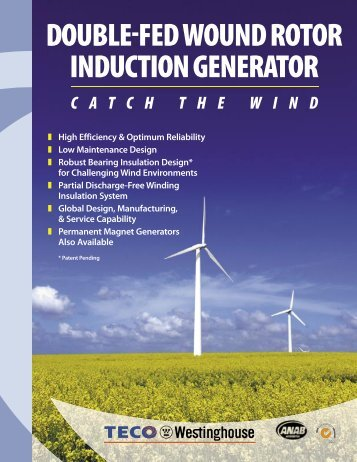 Double-Fed Wound Rotor Induction Generator Flyer (PDF 193KB / 2 ...