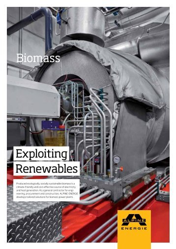 Biomass Exploiting Renewables - Alpine Energie