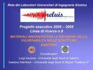 Progetto esecutivo 2005 - ReLUIS