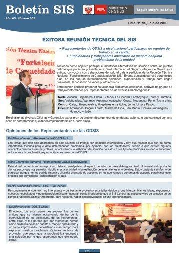 BOLETIN SIS_N° 005 (11-06-09)
