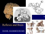 Reflexes and Brain - Sinoe medical homepage.
