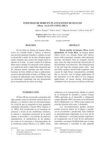 TOXICIDAD DE BORO EN PLANTACIONES DE BANANO (Musa AAA)