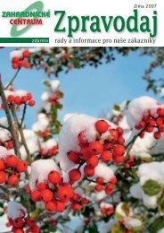 Zima - Zahradnictví Chládek