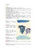 Untitled - Scienzaefilosofia.It - Page 7